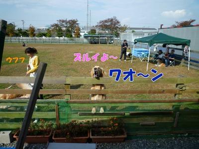 blog15_091019