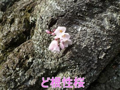 blog8_104024