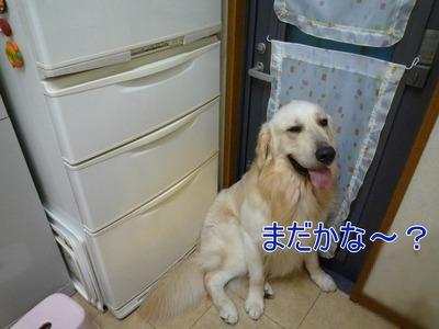 20100717_4