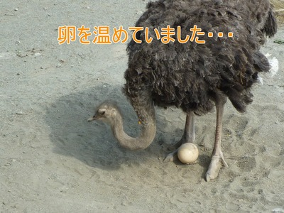 blog7_090924