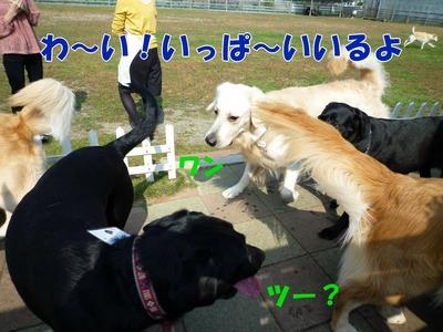 blog2_091019