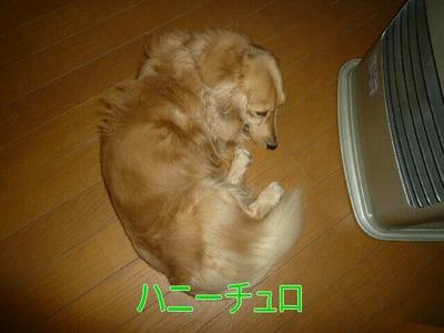 blog3_091221
