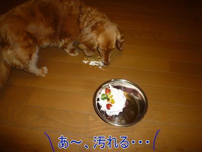 blog7_100420