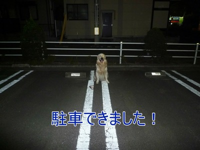 blog3_090928