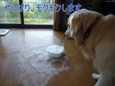 blog2_090929