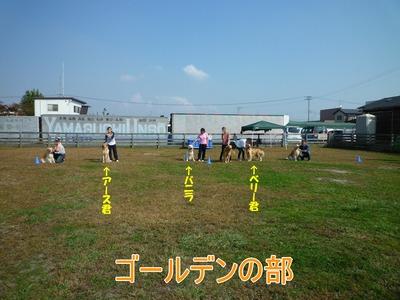 blog13_091019