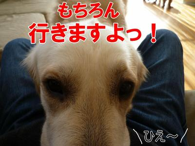 blog8_100220