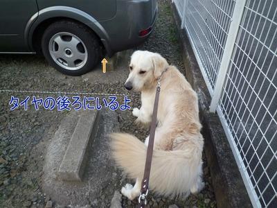 blog3_091022