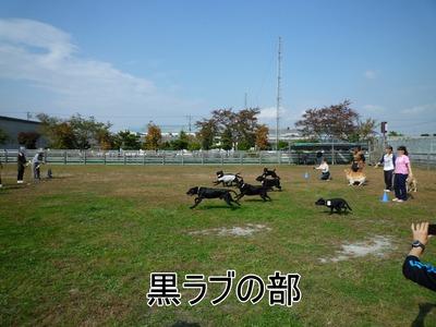blog12_091019