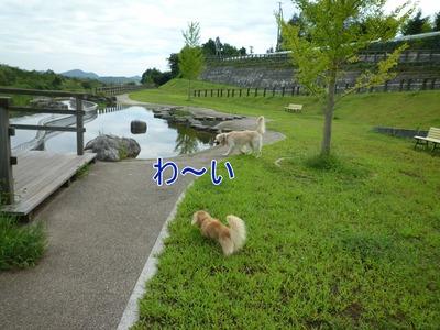 20100912_14