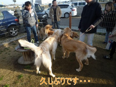 blog7_100315