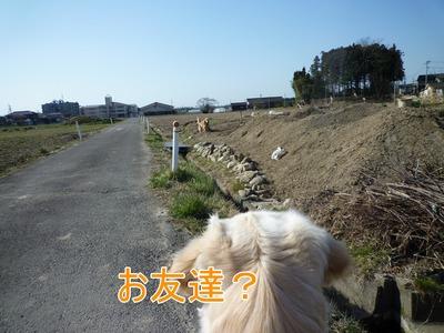 blog1_105018