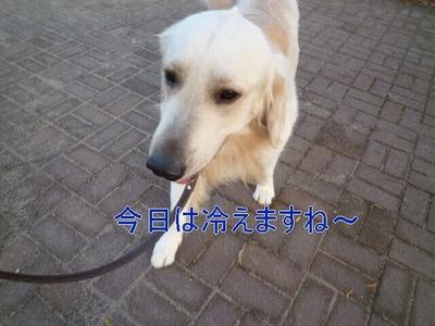 blog1_091216
