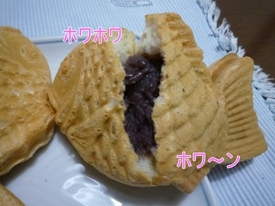 blog4_100309
