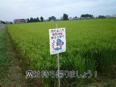 blog4_090831