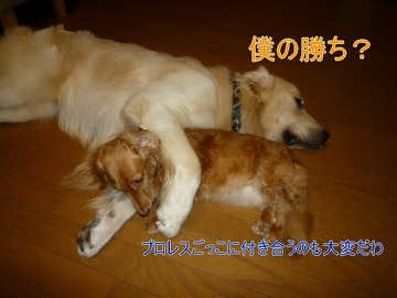 blog2_0808