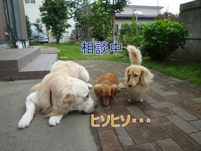 blog3_09016