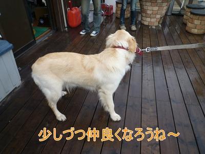 blog4_100130