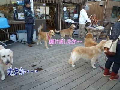 blog9_091123
