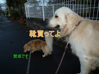 blog1_091125