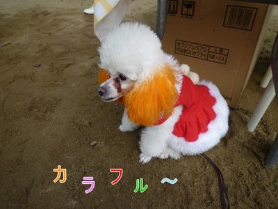 blog1_091223