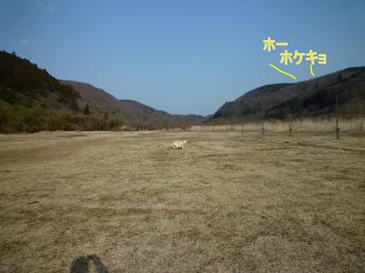 blog1_103022
