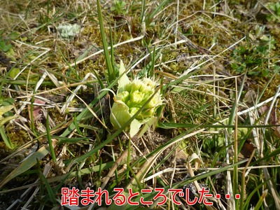 blog5_100321
