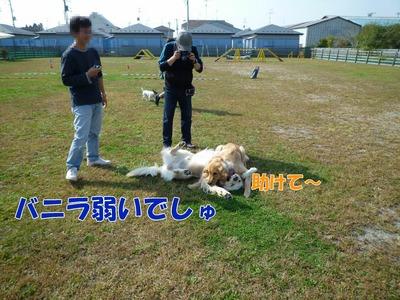 blog7_091019