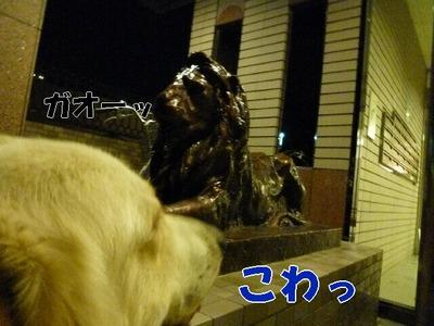 blog4_090828