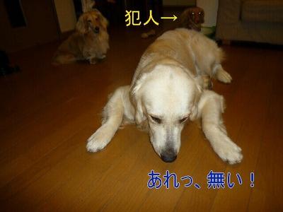 blog4_090822