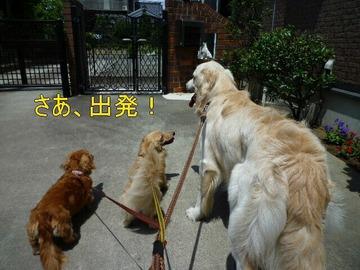 blog5_090802