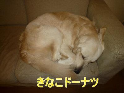 blog4_091221