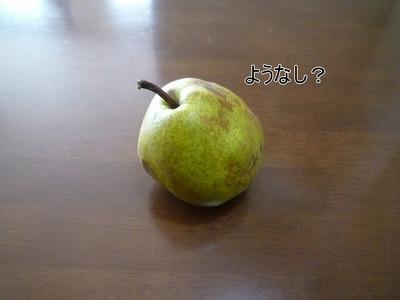blog3_091231
