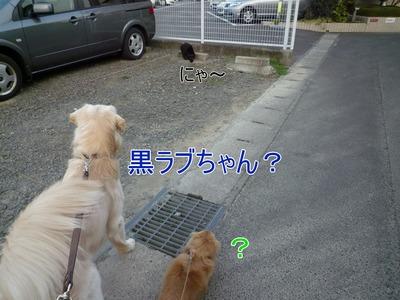 blog2_091022
