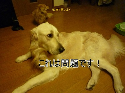 blog1_1001a