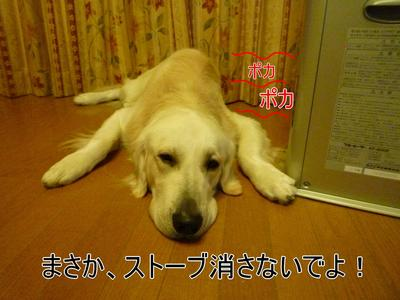 blog4_091128