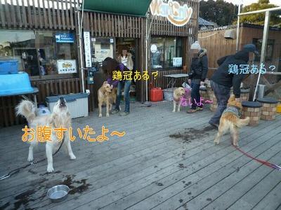 blog1_100127