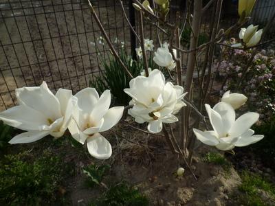blog2_104010
