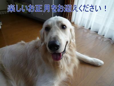 blog5_091231