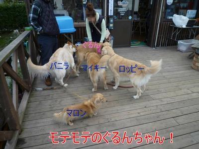 blog1_091123