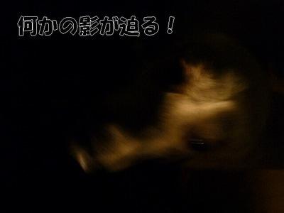 blog2_090821