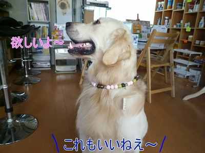 blog7_100141