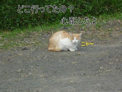 blog1_09013