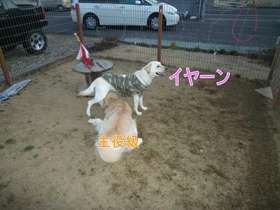 blog9_100125
