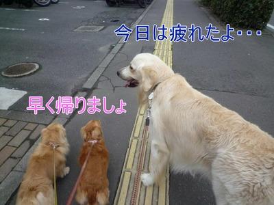 blog1_09018