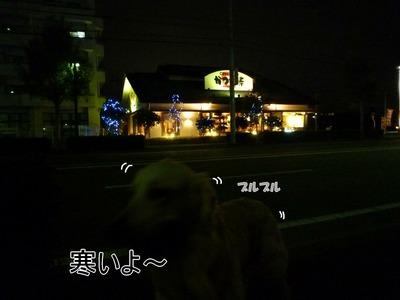 blog1_091128