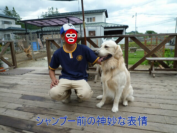 blog2_090719