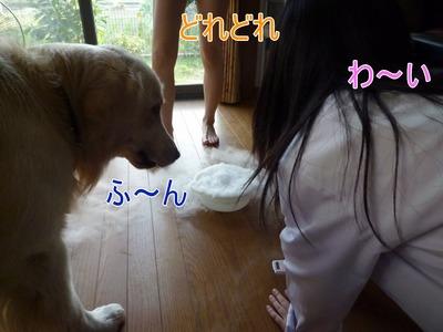 blog4_090929