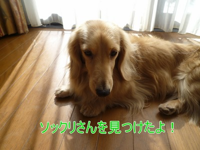 blog1_100210