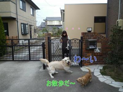 blog1_091229